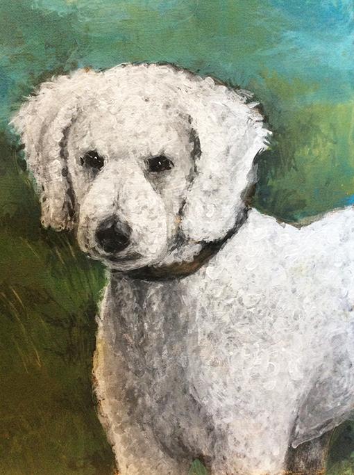 MVS, Portrait of a Poodle