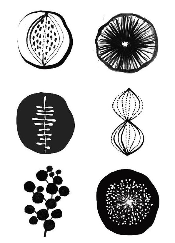 MVS Nature Fonts 1